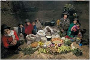 One week of food for the Ayme family in Ecuador (Menzel and D'Aluisio, 2005)