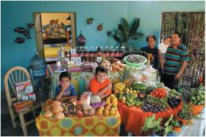 One week of food for the Casales family in Mexico (Menzel and D'Aluisio, 2005)