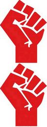 RG_socialist_fist_201406_V